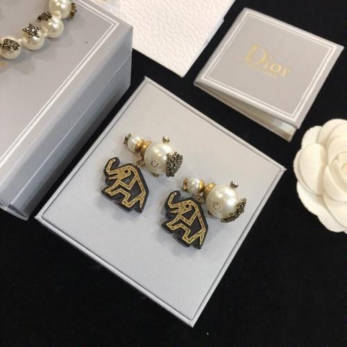 Christian Dior Earrings #760238