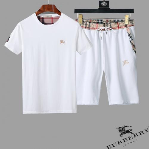 Burberry Tracksuits Short Sleeved O-Neck For Men #761856