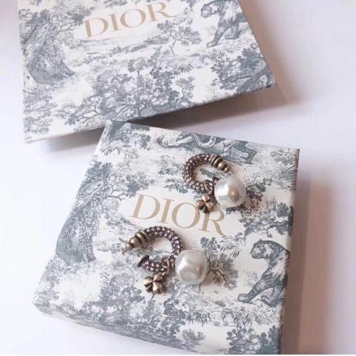 Christian Dior Earrings #763233