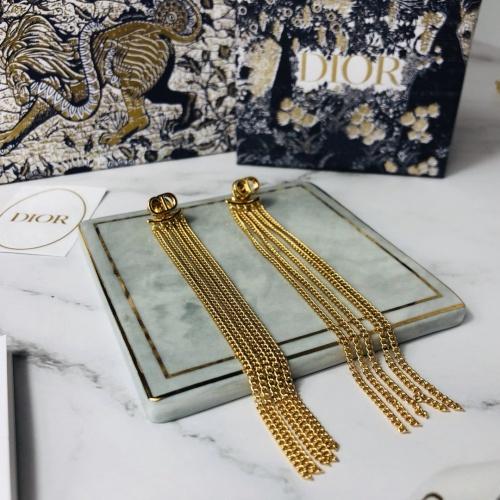 Christian Dior Earrings #764872