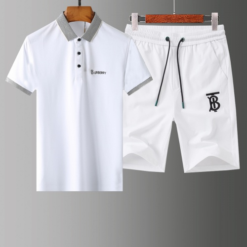 Burberry Tracksuits Short Sleeved Polo For Men #765453