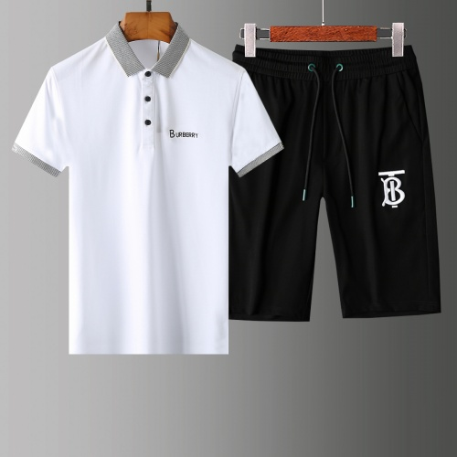 Burberry Tracksuits Short Sleeved Polo For Men #765454
