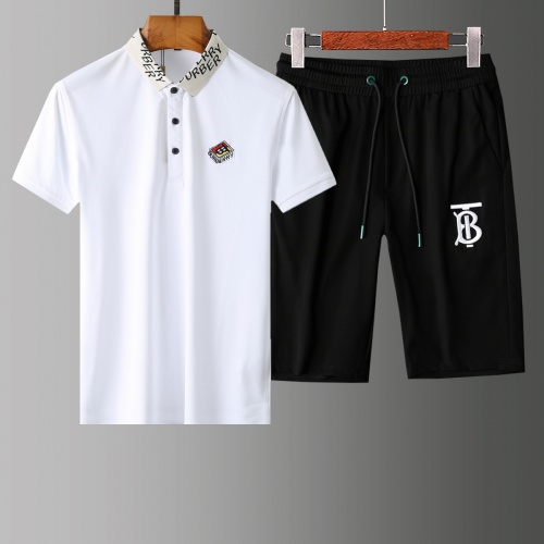 Burberry Tracksuits Short Sleeved Polo For Men #765515