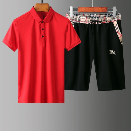 Burberry Tracksuits Short Sleeved Polo For Men #765524
