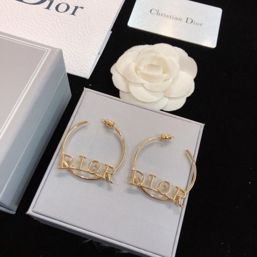 Christian Dior Earrings #773680