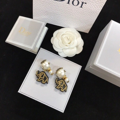 Christian Dior Earrings #773777