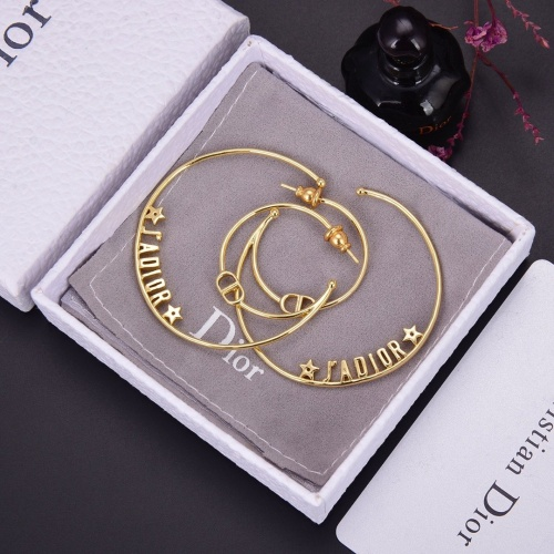 Christian Dior Earrings #775253