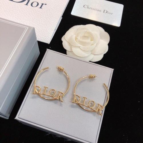Christian Dior Earrings #775525