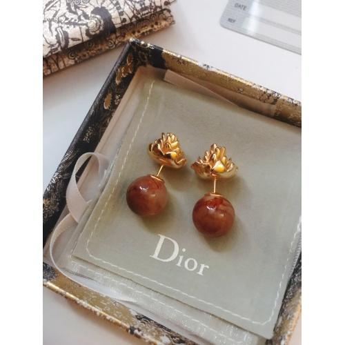 Christian Dior Earrings #776248
