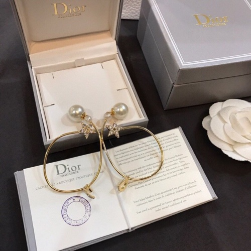 Christian Dior Earrings #778419