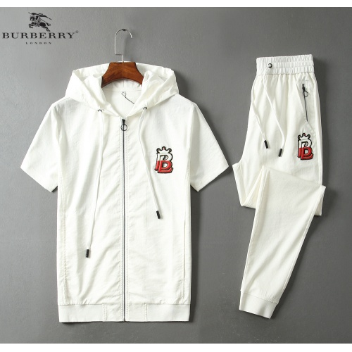 Burberry Tracksuits Short Sleeved Hat For Men #779064
