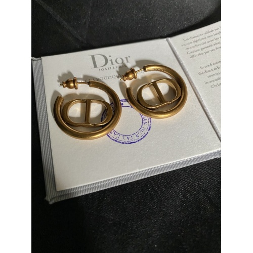 Christian Dior Earrings #779804