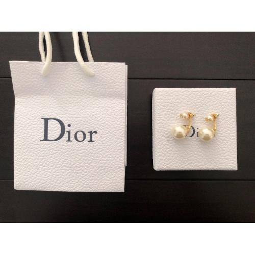 Christian Dior Earrings #779905