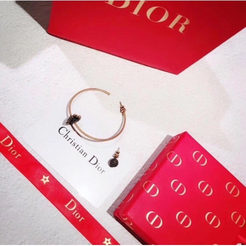 Christian Dior Earrings #780530