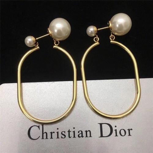 Christian Dior Earrings #783671