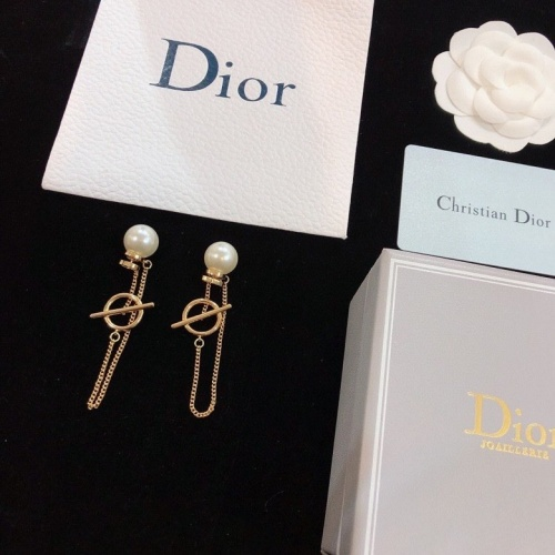 Christian Dior Earrings #784668