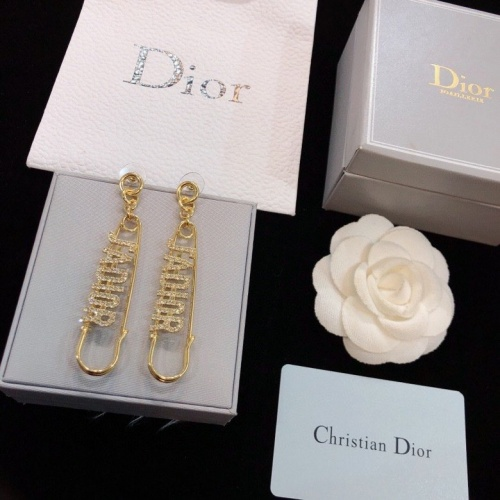 Christian Dior Earrings #789678