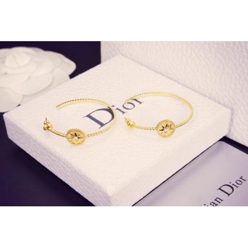 Christian Dior Earrings #792313
