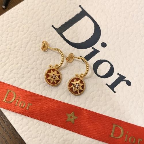 Christian Dior Earrings #792891