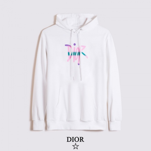 Christian Dior Hoodies Long Sleeved Hat For Men #793129