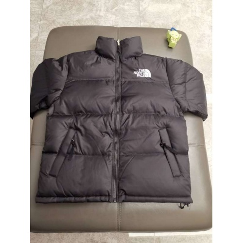 The North Face Down Feather Coat Long Sleeved Zipper For Unisex #793413
