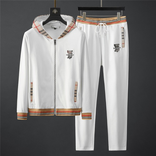 Burberry Tracksuits Long Sleeved Zipper For Men #796835