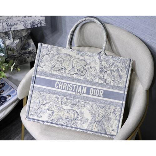 Christian Dior AAA Tote-Handbags For Women #797611