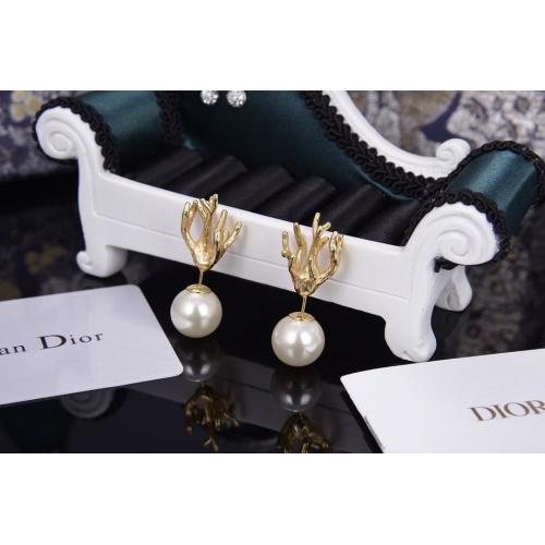 Christian Dior Earrings #801427