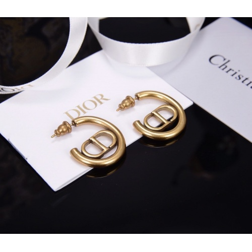 Christian Dior Earrings #802786