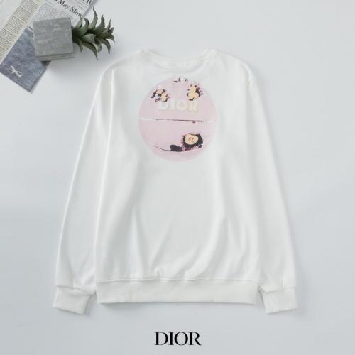 Christian Dior Hoodies Long Sleeved O-Neck For Men #803425