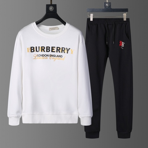 Burberry Tracksuits Long Sleeved O-Neck For Men #803818
