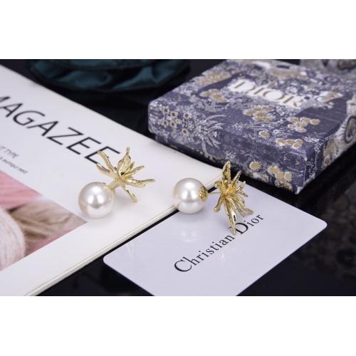 Christian Dior Earrings #804540