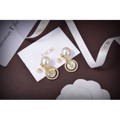Christian Dior Earrings #805828