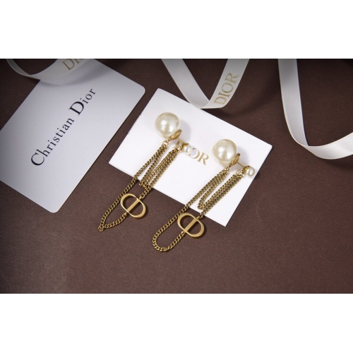Christian Dior Earrings #806595