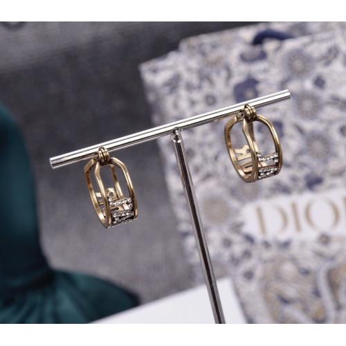 Christian Dior Earrings #806641