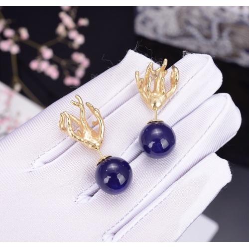 Christian Dior Earrings #807306