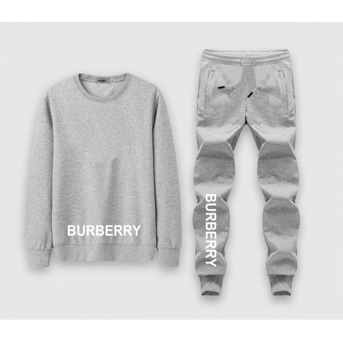 Burberry Tracksuits Long Sleeved O-Neck For Men #808554