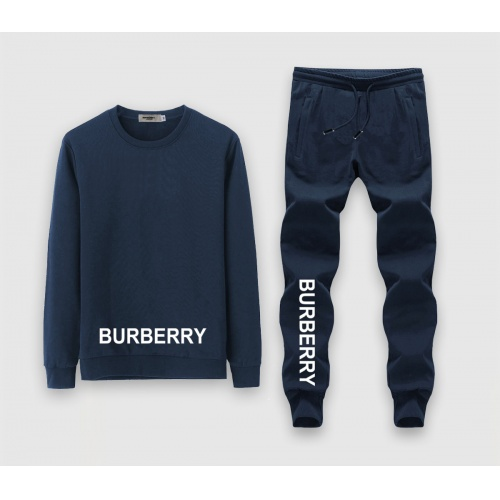 Burberry Tracksuits Long Sleeved O-Neck For Men #808555