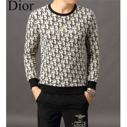 Christian Dior Hoodies Long Sleeved O-Neck For Men #808835