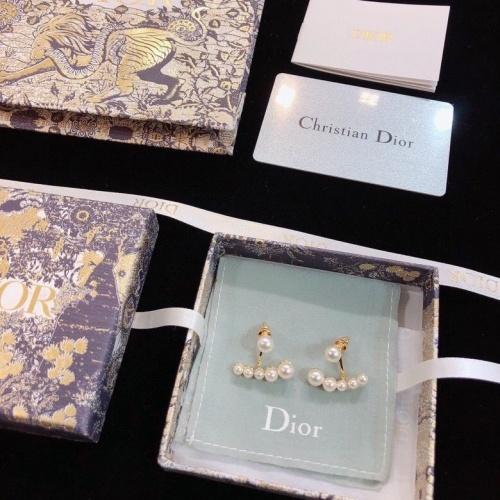 Christian Dior Earrings #809161