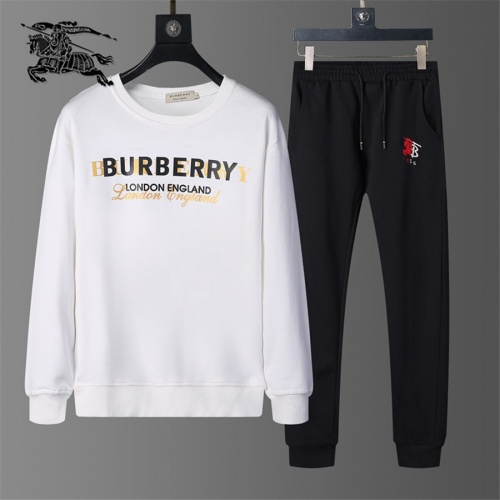 Burberry Tracksuits Long Sleeved O-Neck For Men #810464