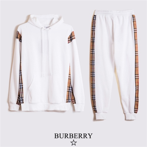 Burberry Tracksuits Long Sleeved For Men #810700