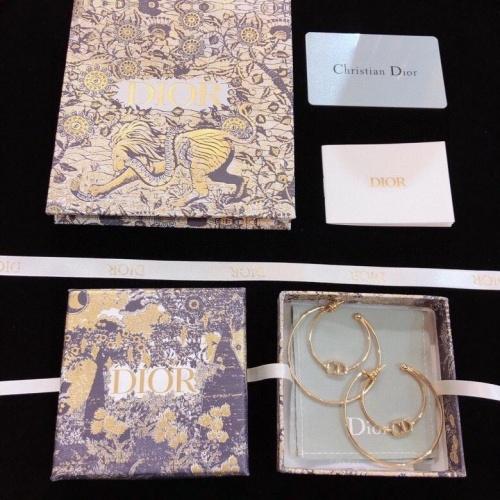 Christian Dior Earrings #811167