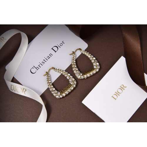 Christian Dior Earrings #812276