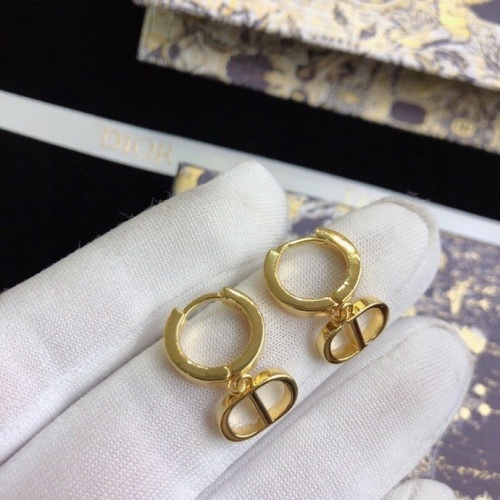 Christian Dior Earrings #812648