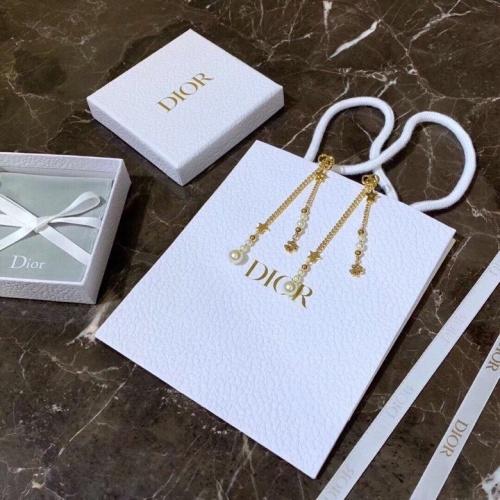 Christian Dior Earrings #812651