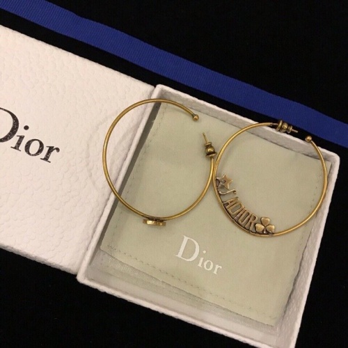 Christian Dior Earrings #812936