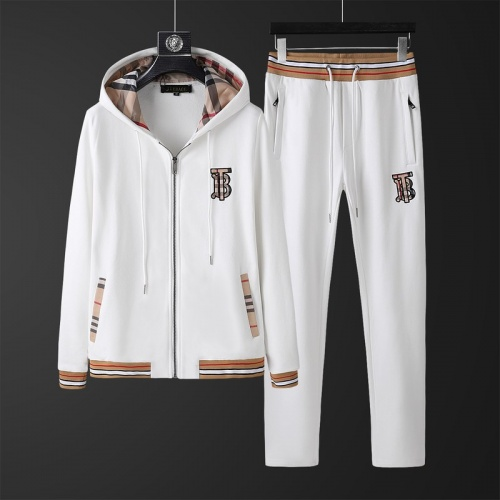 Burberry Tracksuits Long Sleeved Zipper For Men #813476