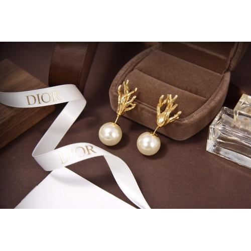 Christian Dior Earrings #814307
