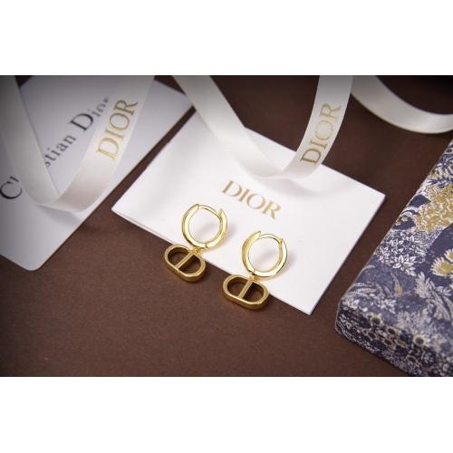 Christian Dior Earrings #814727